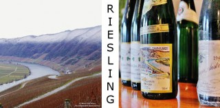 RIESLING TEDESCHI – giovedì 4 maggio