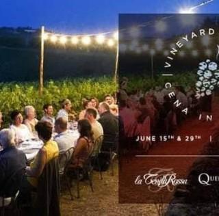 Cene in vigna a Castellina in chianti |15 29 giugno | 13 27 luglio